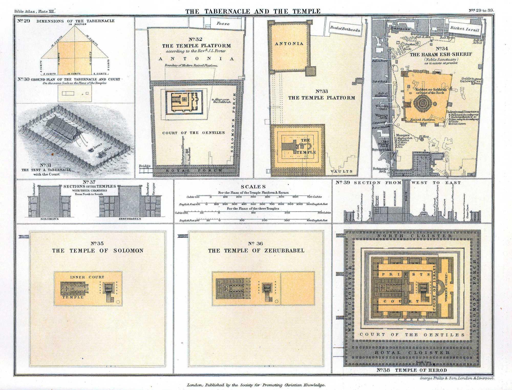 Temple Comparison