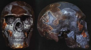 Omo 1 skull remains, considered the oldest Homo sapiens fossils discovered, scientists date to 200,000 years old