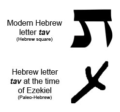 last hebrew letter the miracle new type of durer coding the margret 110